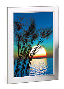 Exhibition display Lightboxes, Quality Slimline lightweight lighboxes in a variety of sizes.