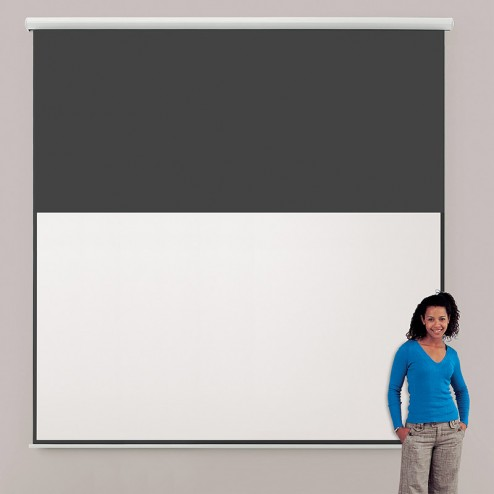 Projoector Screen Wall Mounted