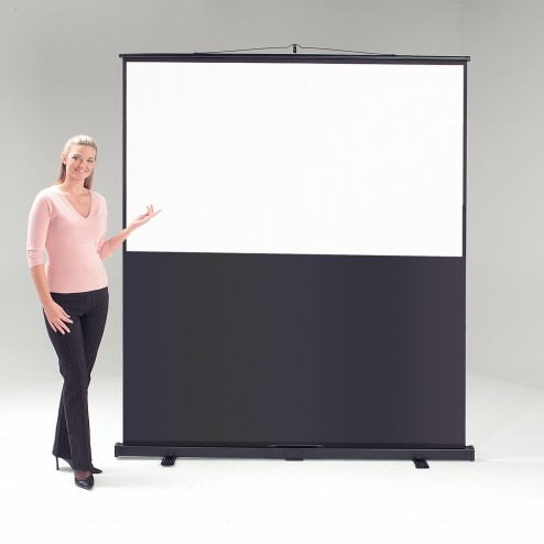 1130 x 2000mm Portable Projector Screen