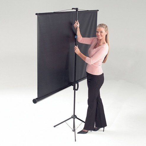 Rear of portable tripod projector screen