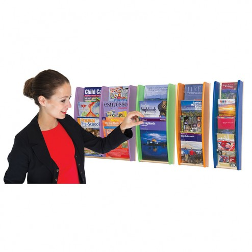 Colourama literature dispenser
