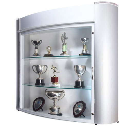 Wall mounted trophy display