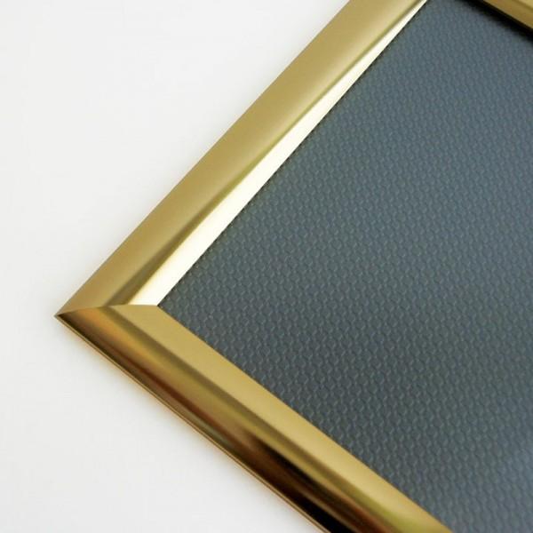 Gold Snapframe