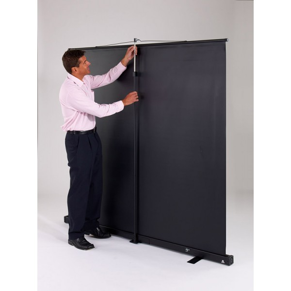 Sturdy pole at rear of projector screen
