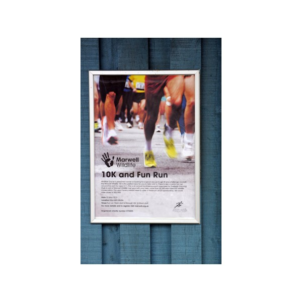 Outdoor Poster Printing