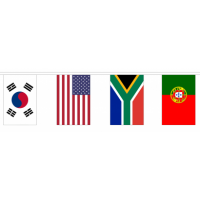 Multi Nation Bunting - 32 Flags / 18.2m Length