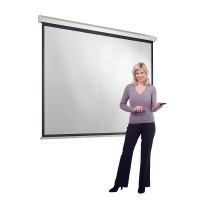 Eyeline Design Electric Screen