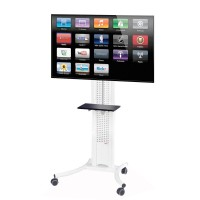 LCD Screen Wheeled Stand