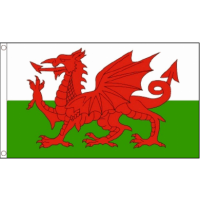 Welsh Flag - 5ft x 3ft - Promotional