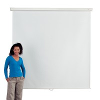 Eyeline Basic Wall Screen