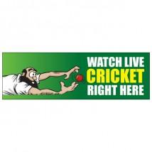 Cricket - Banner 177
