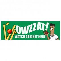 Cricket - Banner 176