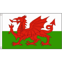 Welsh Flag - 5ft x 3ft - Durable