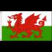 Welsh Flag - 5ft x 3ft - Durable