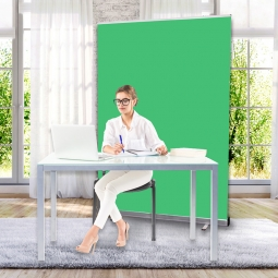 Work from home green screen