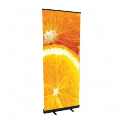 Carbon Effect Value Banner Stand
