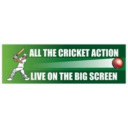 Cricket - Banner 175