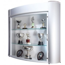 Wall mounted trophy display